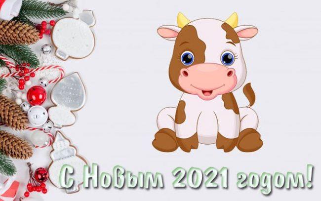 kartinki-s-novym-godom-2021-1-650x407.jpg